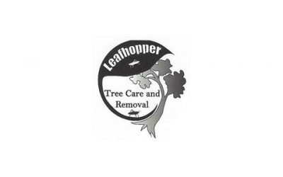 Leafhopper Tree Care and Removal, LLC