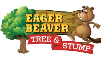 Eager Beaver Tree & Stump